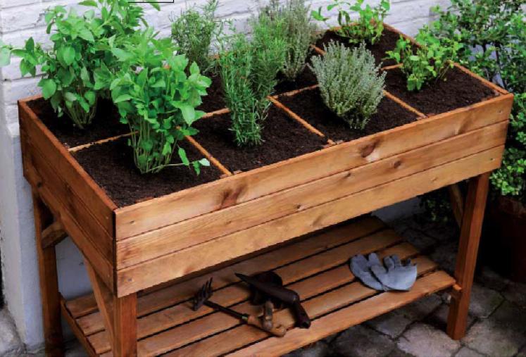 Plantar un huerto en un balcón es posible, fácil, rentable, ecológico y satisfactorio