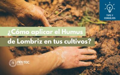 ¿Cómo aplicar el Humus de lombriz en tu cultivo?