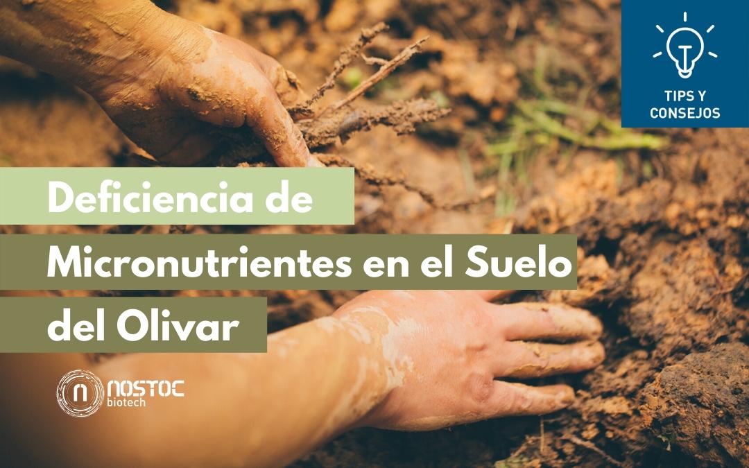 Deficiencia de Micronutrientes en el Suelo del Olivar