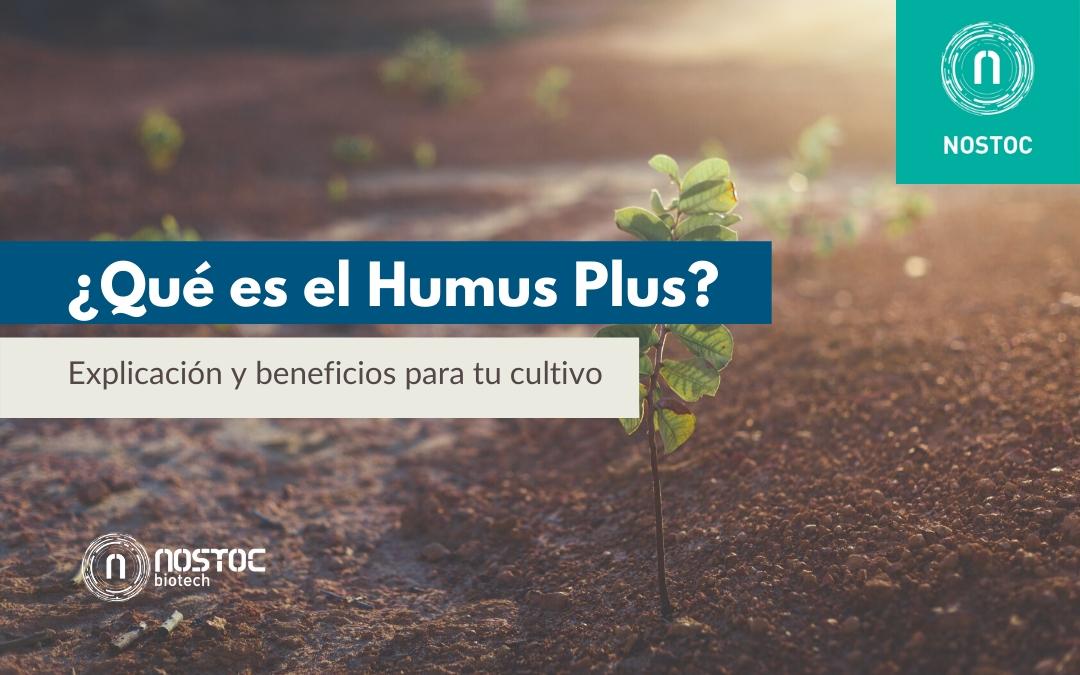 ¿Qué es el Humus Plus? Explicación y beneficios para tu cultivo