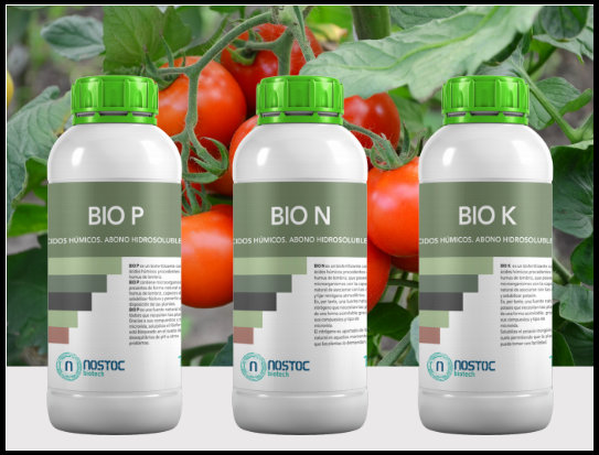 Biofertilizantes desarrollados y comercializados por Nostoc Biotechnologies S.L